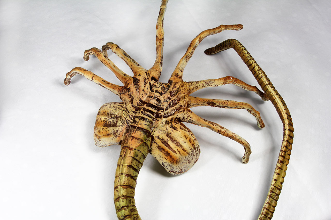 Alien-a-box-Facehugger