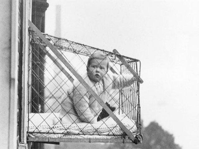 window-cage2