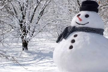 snowman-bg