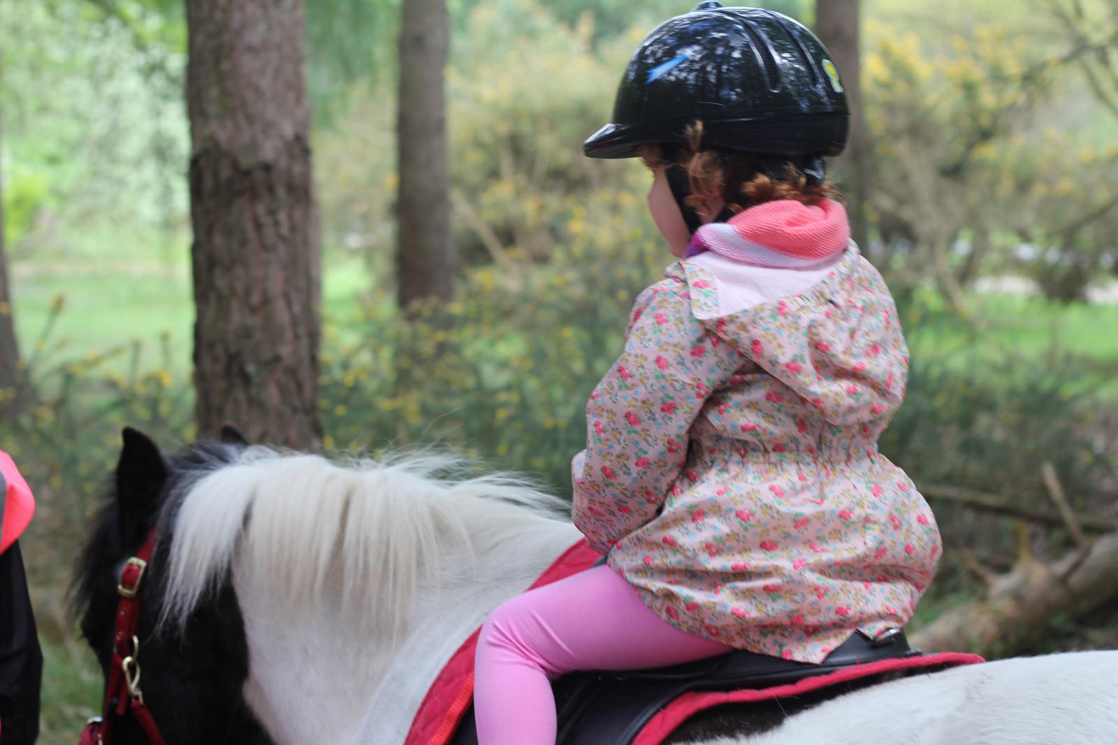 horse-riding-clothing